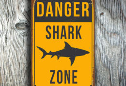 SHARK ZONE SIGN
