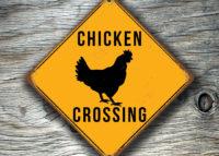 Chicken Crossing Sign