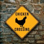 Chicken Crossing sign 3