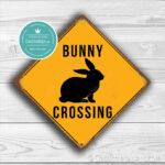 Bunny Crossing Sign 1